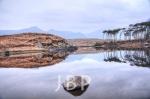 Lake 1.jpg